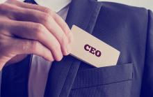 World's First CEO Remuneration Model